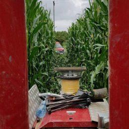 Badanie w okolicach rolniczych